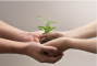 Socially Responsible Investing taking off